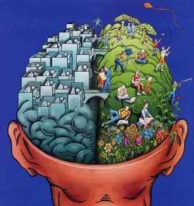left-brain-right-brain